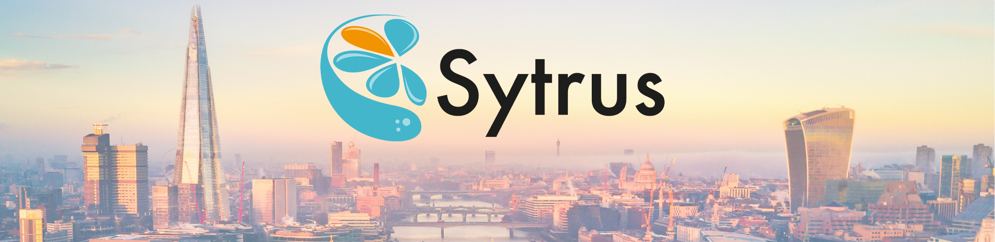 Sytrus Accounting